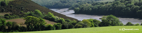 Helford River view