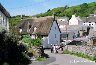 Cadgwith cottage