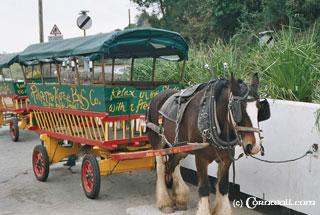 Polperro horse taxi